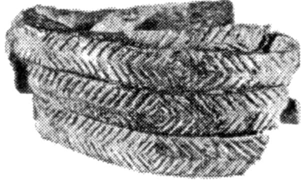 Мезинський шумлячий браслет